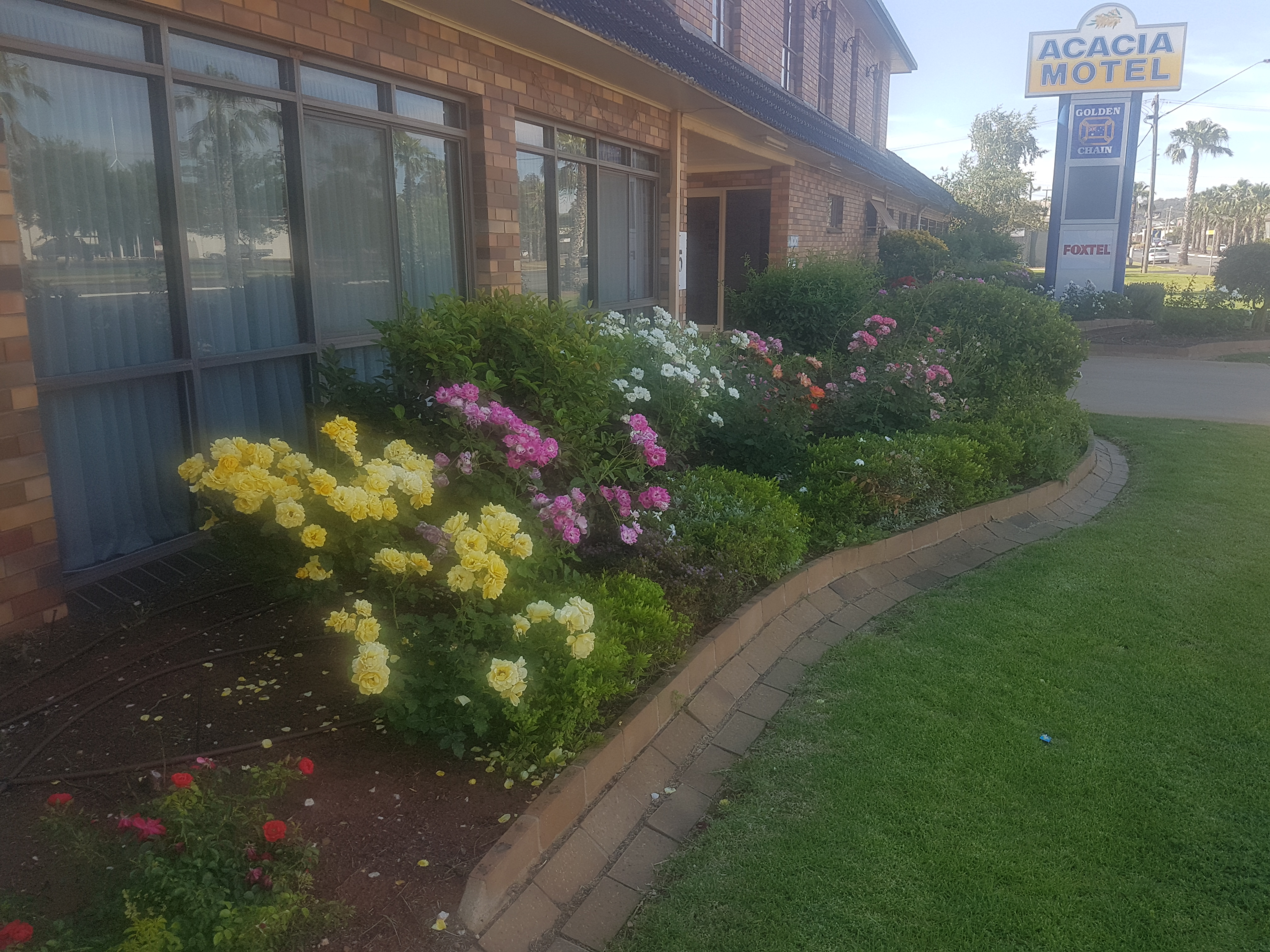 Cheap Motels In Griffith Nsw- Acacia Motel